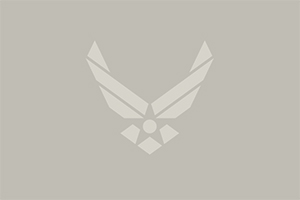Default Air Force Logo